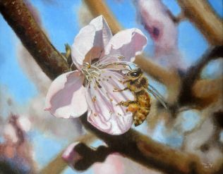 The Beauty And The Bee by Ma Ly